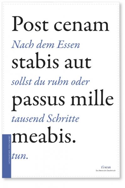 Literarisches Geschirrtuch / lateinisches Sprichwort